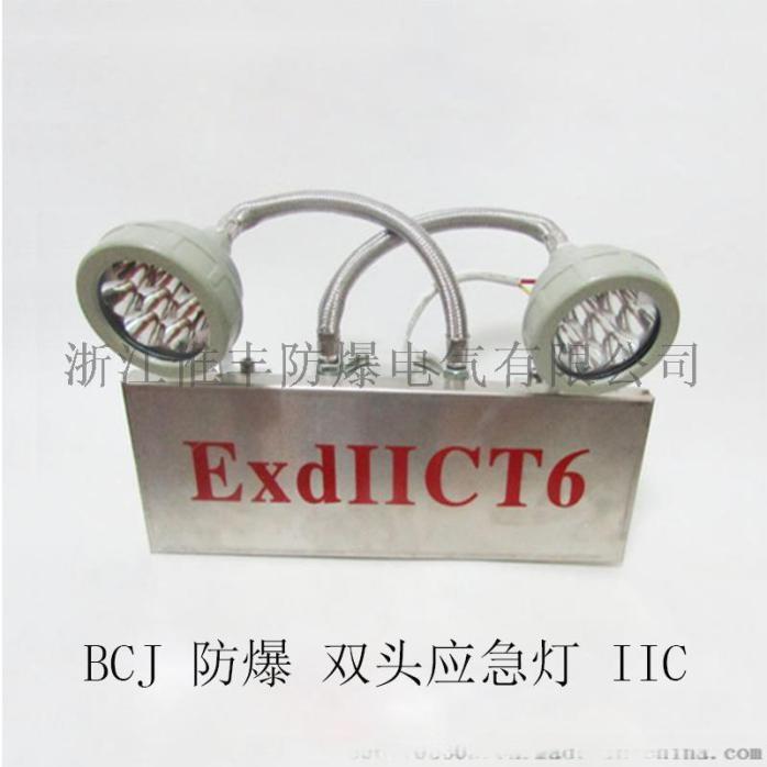 BCJ52双头应急灯-IIC-01