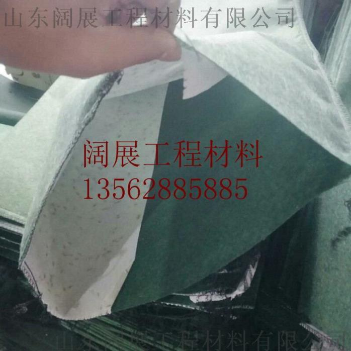 mmexport1522220208475_看图王.jpg
