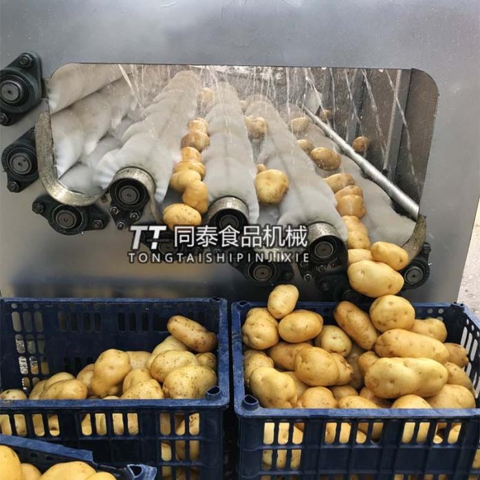 土豆水洗机3