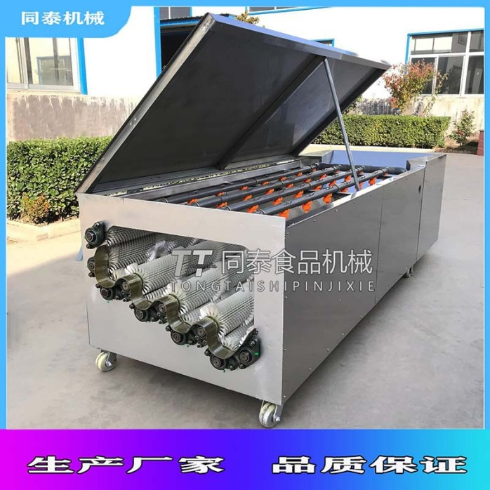 白萝卜清洗机32