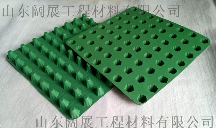 加强型蓄排水板施工方案774883592