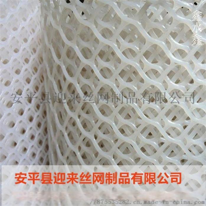 塑料网7.jpg