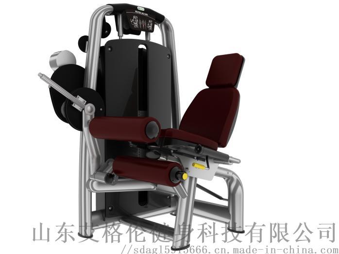 艾格倫AGL-6001坐式後腿屈伸訓練器756185842