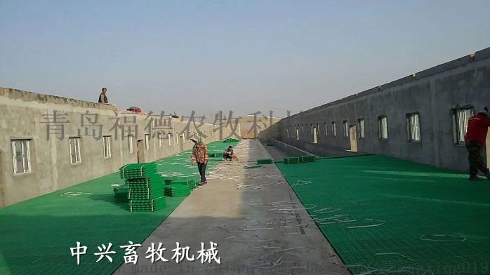 圈养高架羊床塑料羊床的好处羊粪板厂家68066012