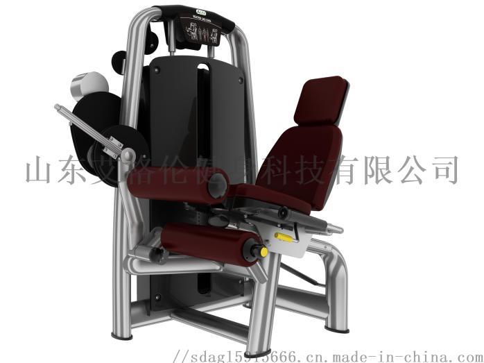 AGL-6001坐式後腿屈伸練習器.jpg