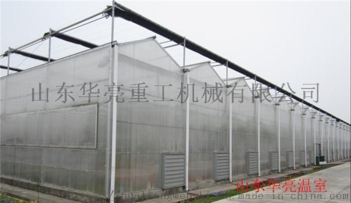 文洛型陽光板溫室.jpg