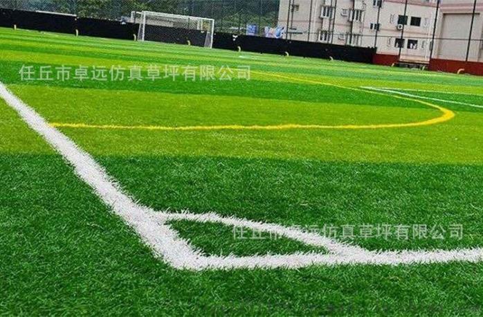 河北足球場建設、人造草坪鋪裝73595042