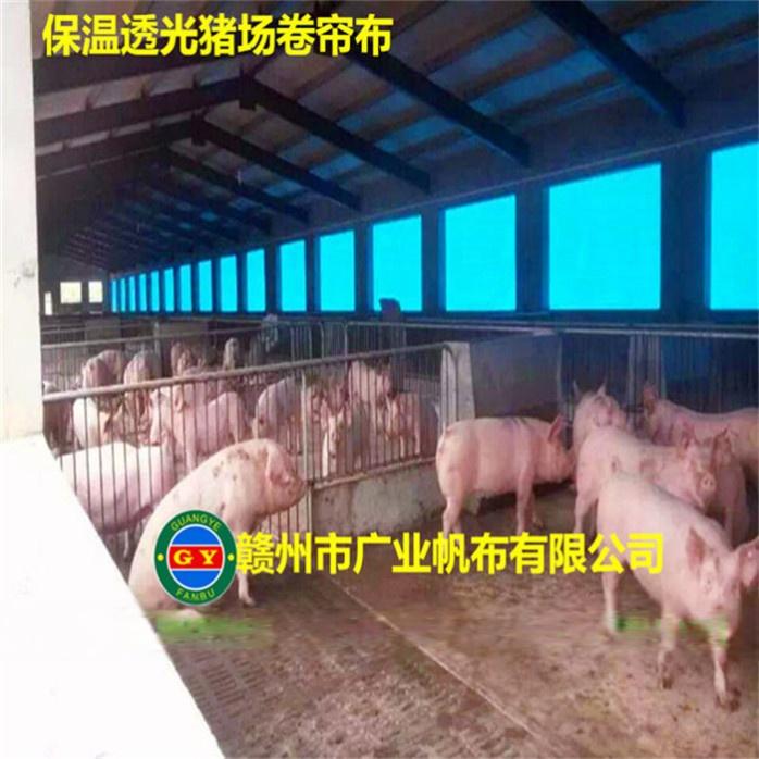 上饶猪场卷帘布 羊场窗帘布772196215