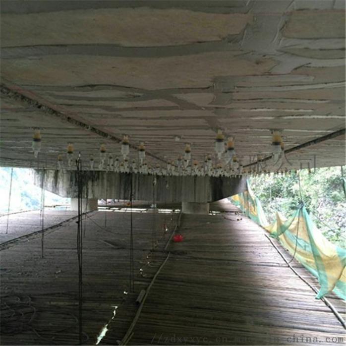 環氧樹脂灌封膠用於橋樑加固項目 - 副本.jpg