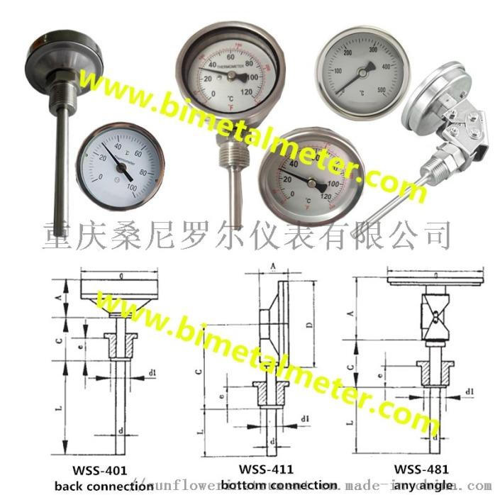 bimetal thermometer (2).jpg