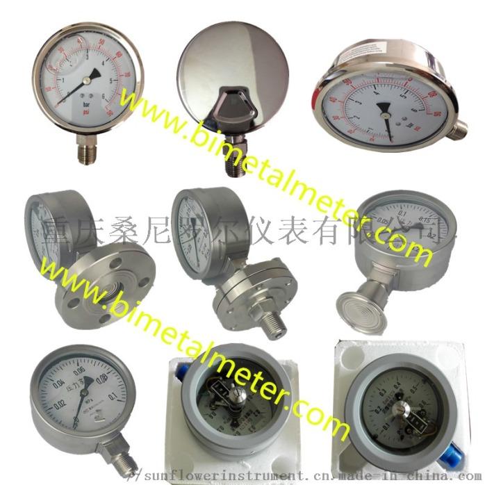 pressure gauge (2).jpg