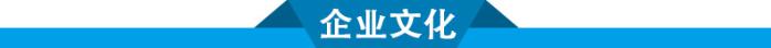 江西惰性瓷球厂家 能强优质惰性瓷球催化剂支撑填料86244195