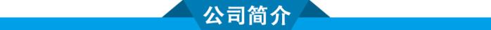 江西惰性瓷球厂家 能强优质惰性瓷球催化剂支撑填料86243475