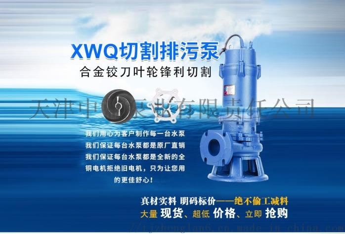 切割式污水泵 大流量排污泵 切割水泵799771842