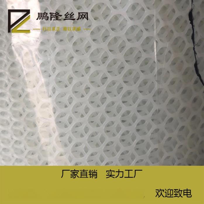 鹏隆 绿色塑料养殖网 塑料平网 塑料平网厂家801893452