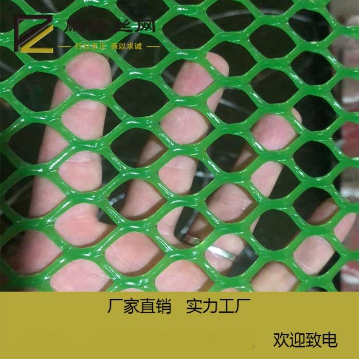 鹏隆 绿色塑料养殖网 塑料平网 塑料平网厂家801893422