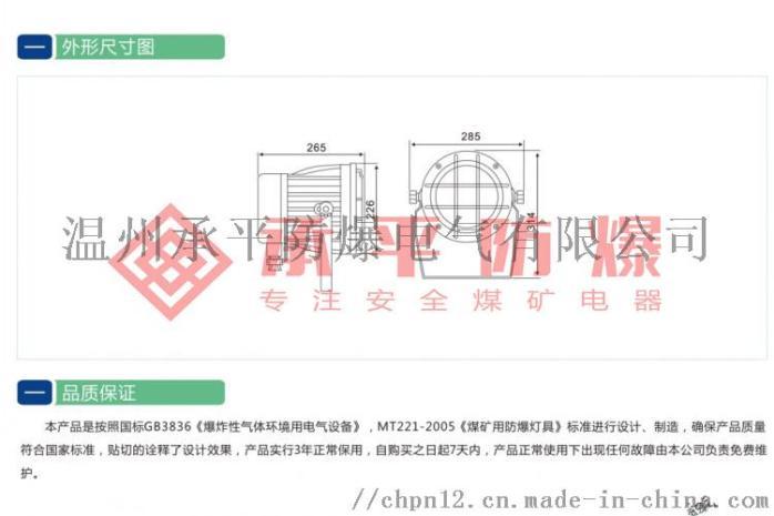 DGS100圆形投光灯图详图三水印.jpg