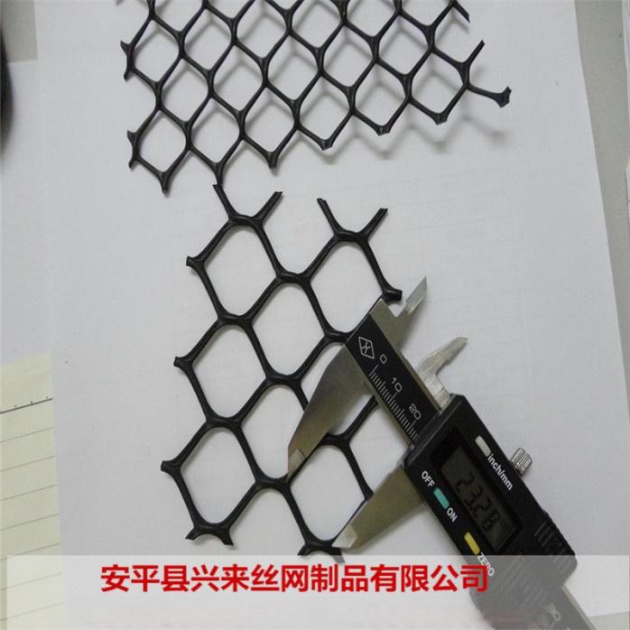 塑料平网 (23).jpg