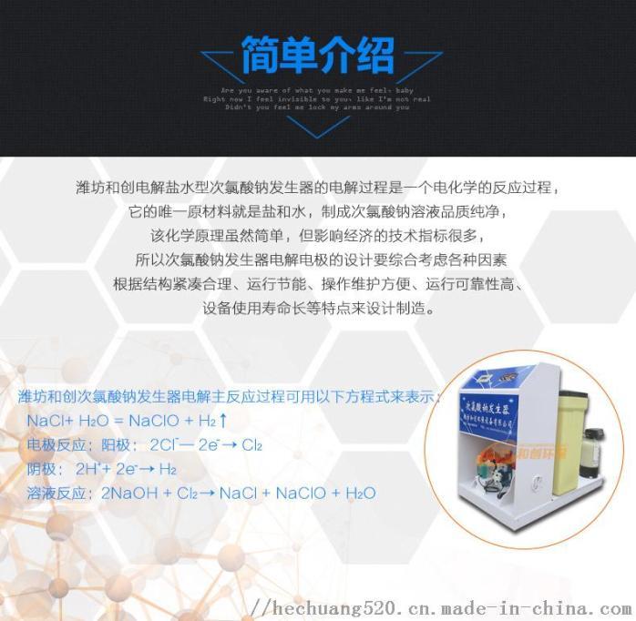 饮水消毒设备/饮水次氯酸钠发生器92028075