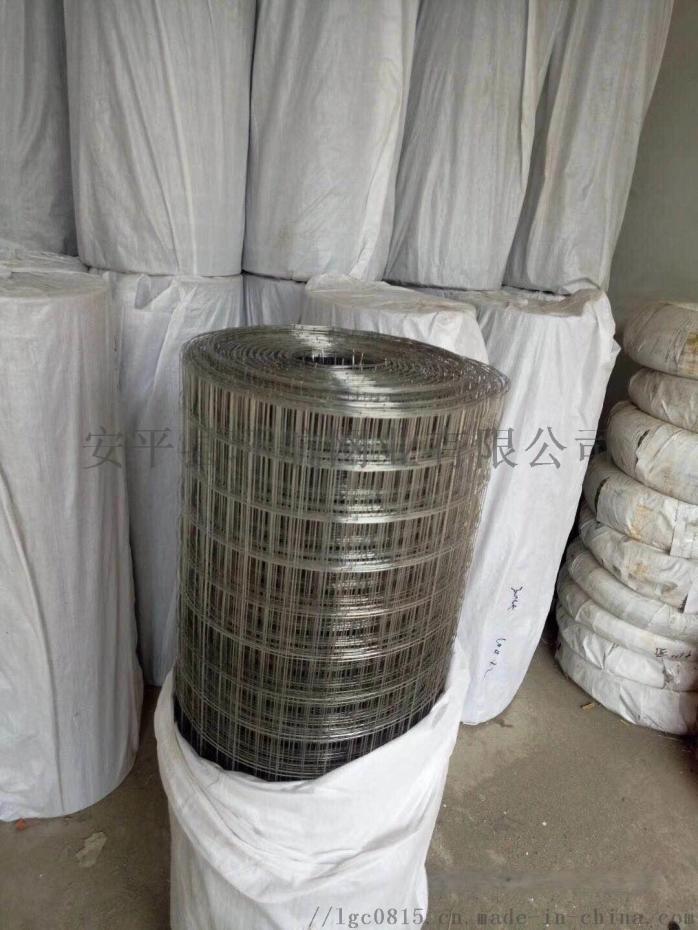 环航供应材质齐全不锈钢电焊网30—40丝改拔电焊网90512952