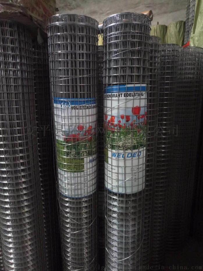 环航精品推荐浸塑电焊网电焊网镀锌电焊网食用菌电焊网89912302