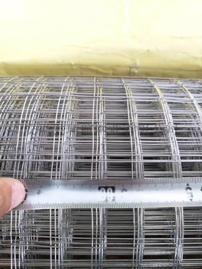 环航网业 养鸡网养鸭网 农用圈玉米网93696602