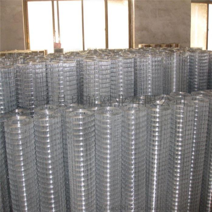 防鸟网防鼠网 养殖围栏网 不锈钢电焊网厂家现货供应807445022
