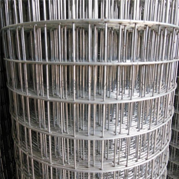 防鸟网防鼠网 养殖围栏网 不锈钢电焊网厂家现货供应807445032