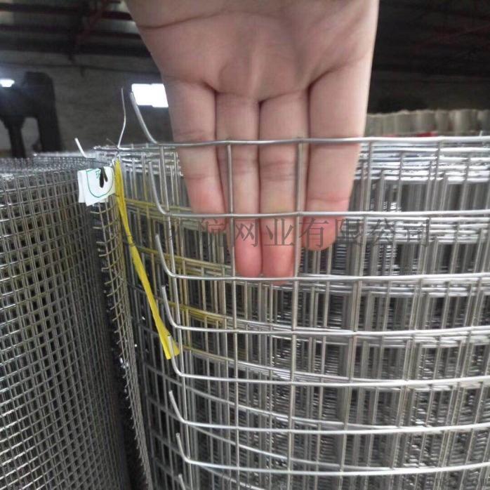 防鸟网防鼠网 养殖围栏网 不锈钢电焊网厂家现货供应807445052