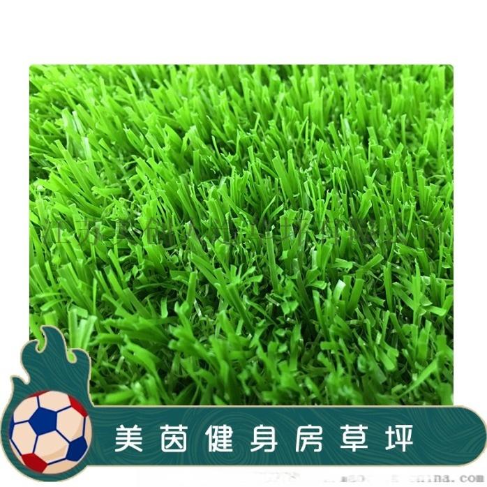 健身房休閒草坪c型全果綠2.jpg