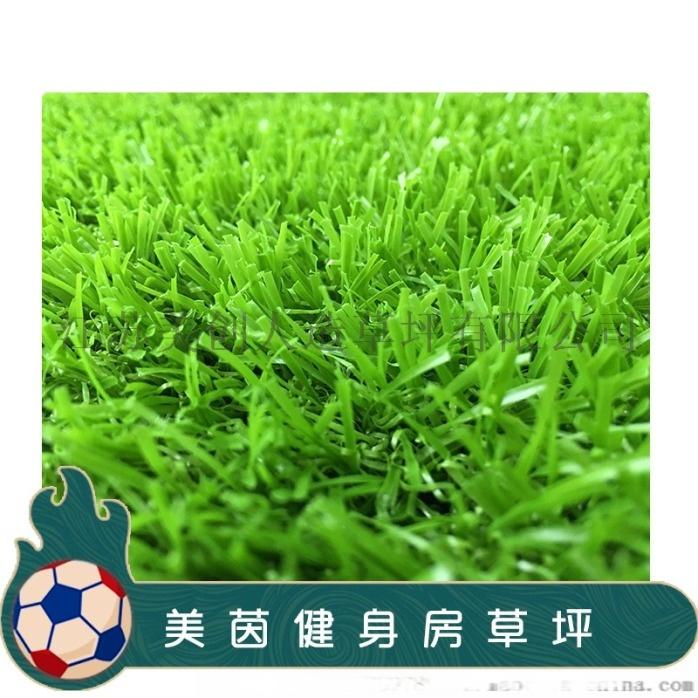 健身房休閒草坪c型全果綠3.jpg
