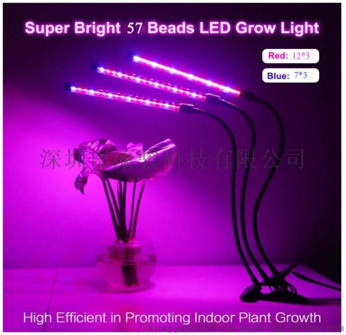 康駿植物燈4.jpg