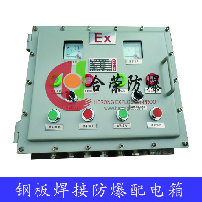户外专用带防雨罩防爆配电控制箱97146932