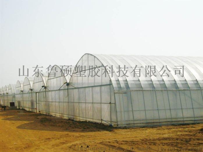 菏澤陽光板大棚