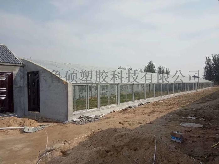 青島陽光板廠家