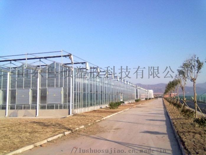 萊蕪陽光板廠家
