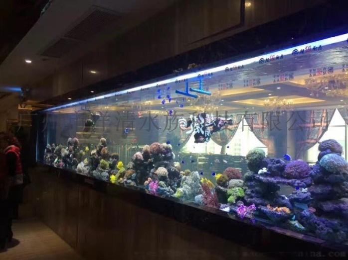 广州海鲜池定做厂家  深圳大型亚克力鱼缸订做施工819516285