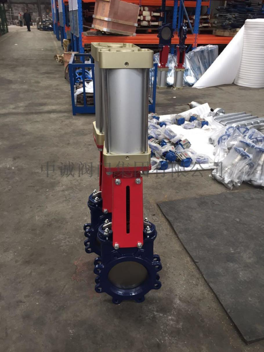 Pneumatic knife gate valve with Lugged.jpg