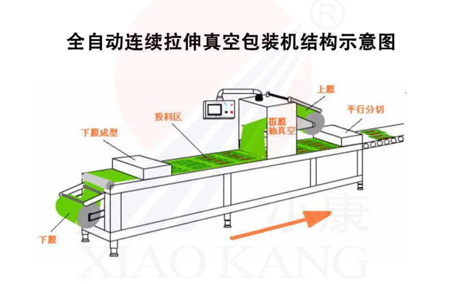 豆制品全自动真空包装机,小康牌连续拉伸真空包装机105301062