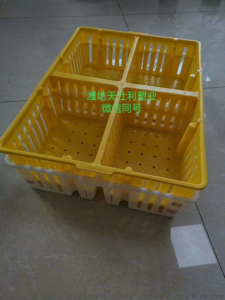 四格鸡苗箱 塑料鸡苗箱 新式塑料鸡苗箱111467672