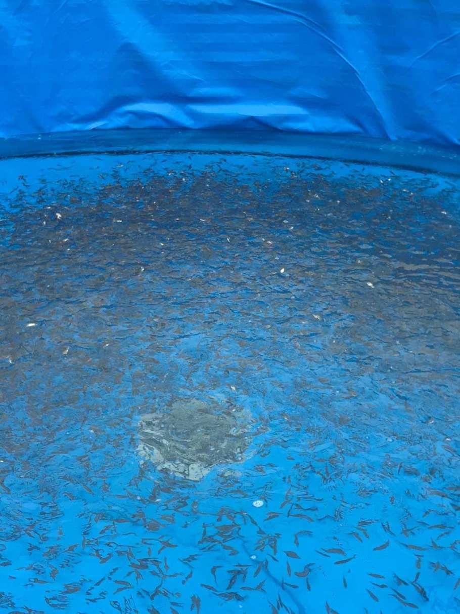 镀锌板水池图片33.jpg
