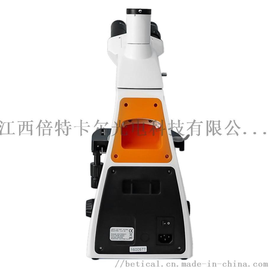 S800T-720HS高校实验室水质检测检验显微镜890769065