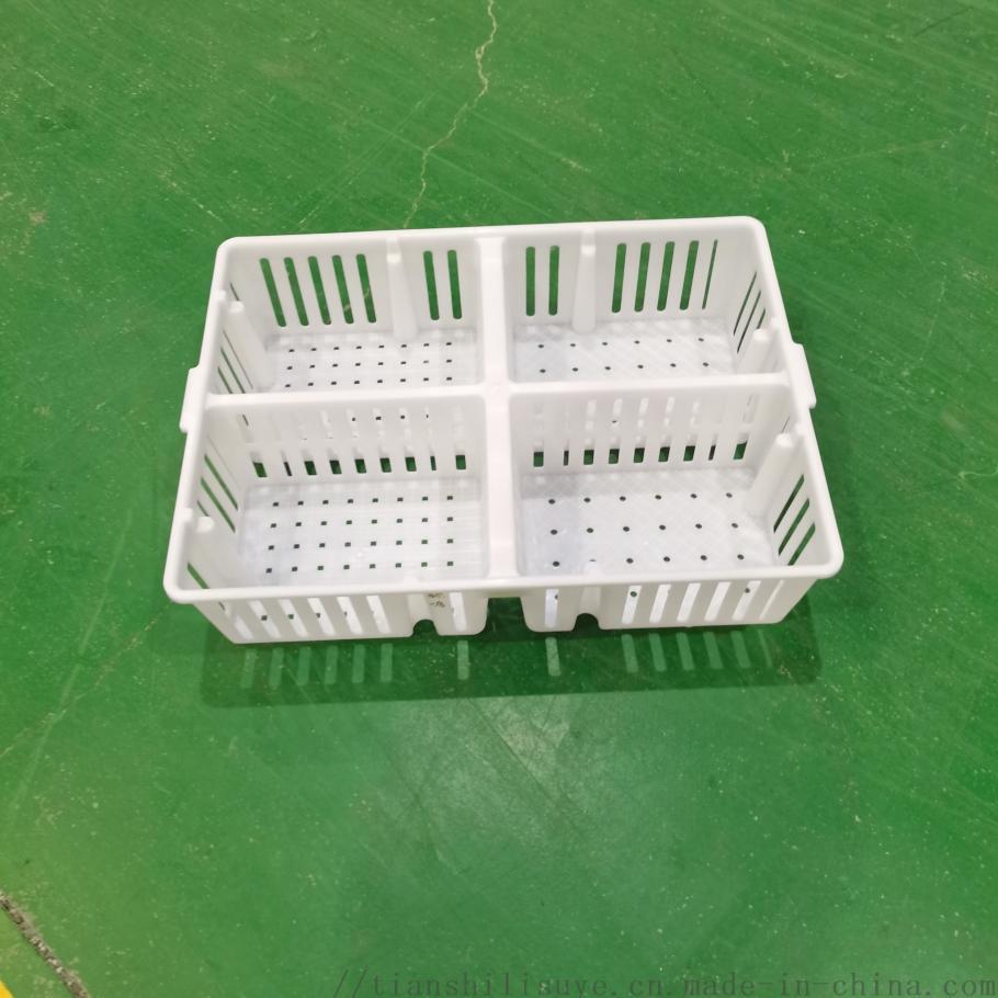 塑料四格鸡苗箱  周转箱  运输箱871717882