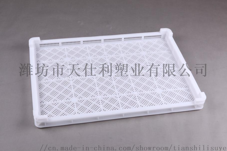 供应塑料单冻盘速冻盘烘干盘846531915