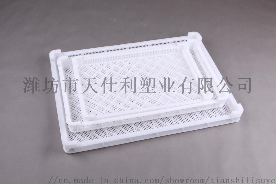 厂家直销600*400*60塑料单冻盘食品单冻盘846073245