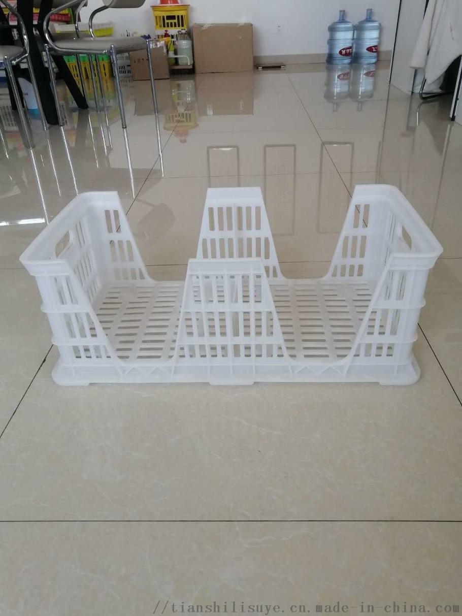 厂家供应塑料种蛋筐种蛋运输筐配蛋托用蛋筐860776112