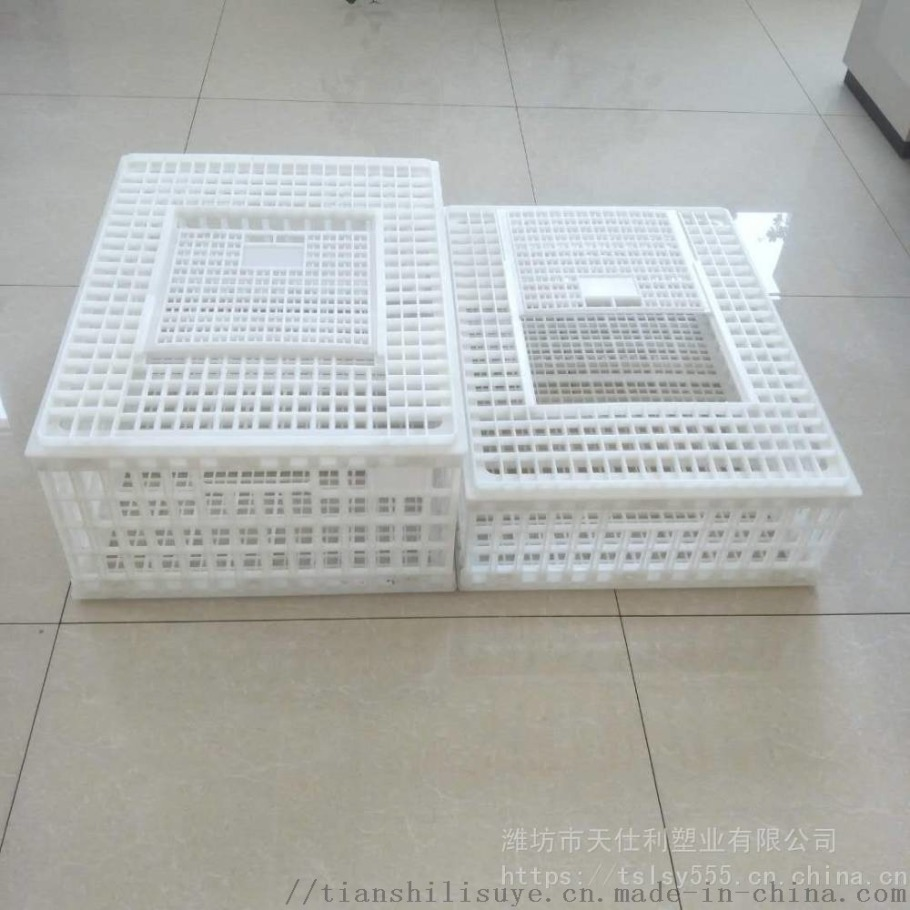天仕利塑料成鸡运输笼塑料鸡笼子鸡鸭周转箱厂家860884042