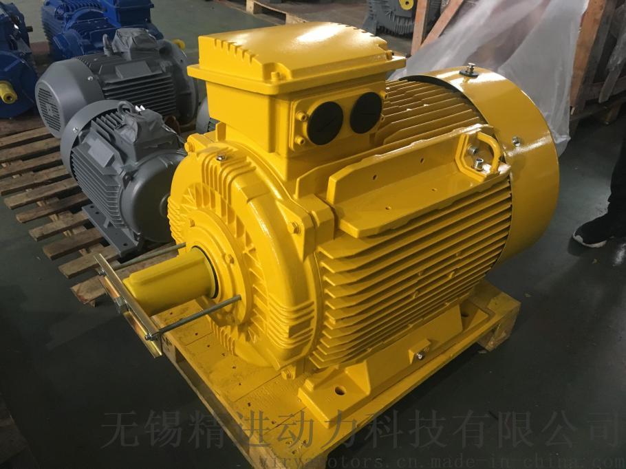 IE4效率 欧标 交流电动机 Virya品牌764912475
