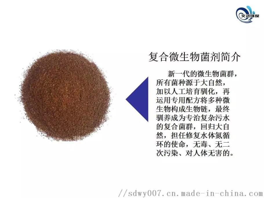 净化槽生物菌