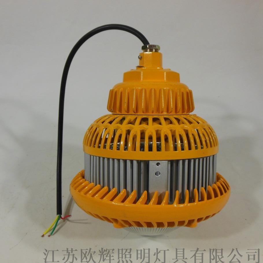 BFC100 黃款 (1).JPG